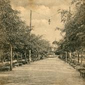 Бульвар проспекта Суворова