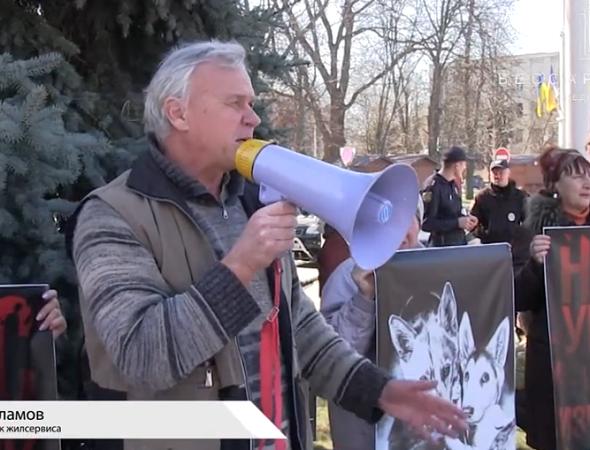 Измаил протестует против убийства животных