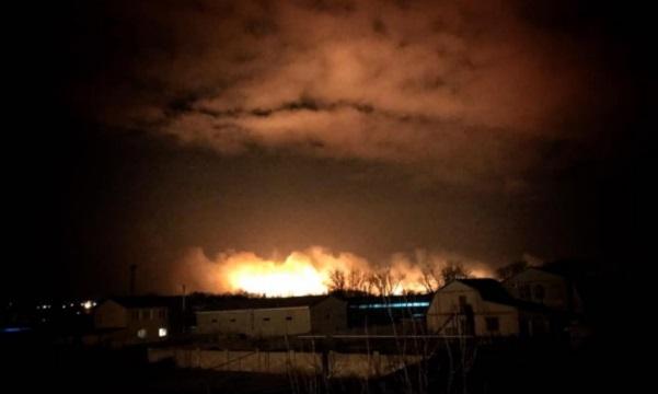 В Одесской области горят плавни – видео масштабного пожара