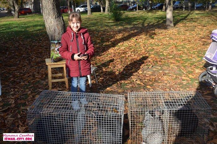В Измаиле прошла выставка домашних животных и птиц. ФОТОРЕПОРТАЖ