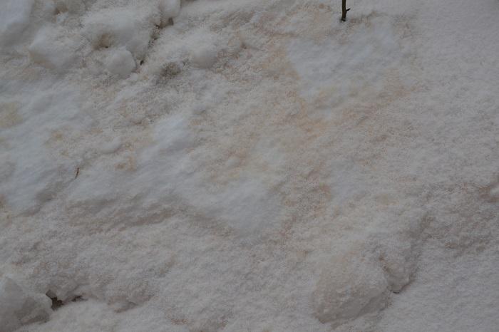 в Измаиле выпал желтый снег