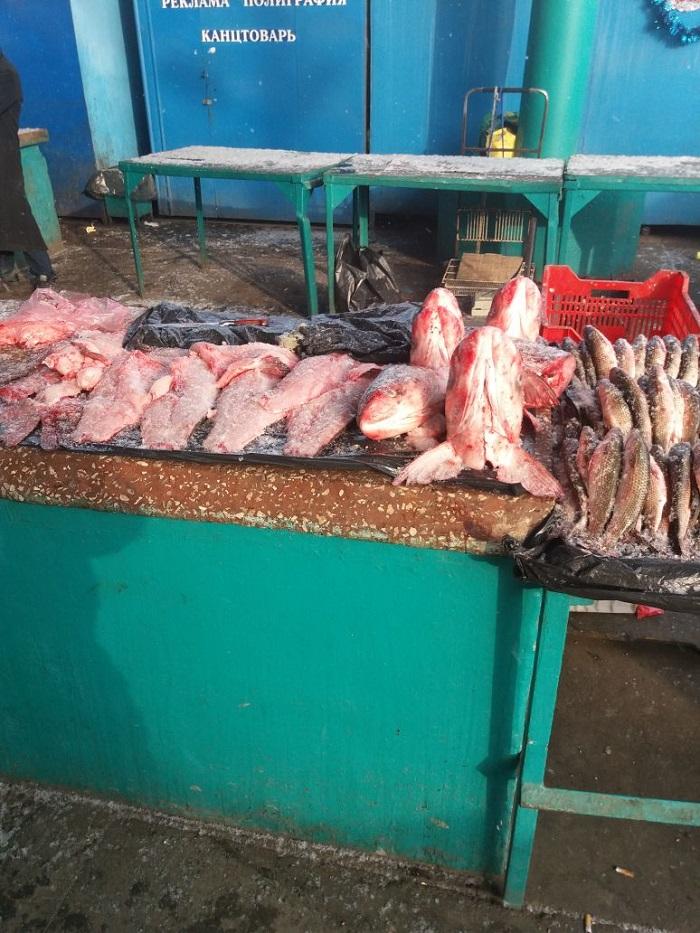 изъятие рыбы Измаил