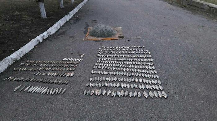 В Бессарабии продолжается борьба с браконьерами