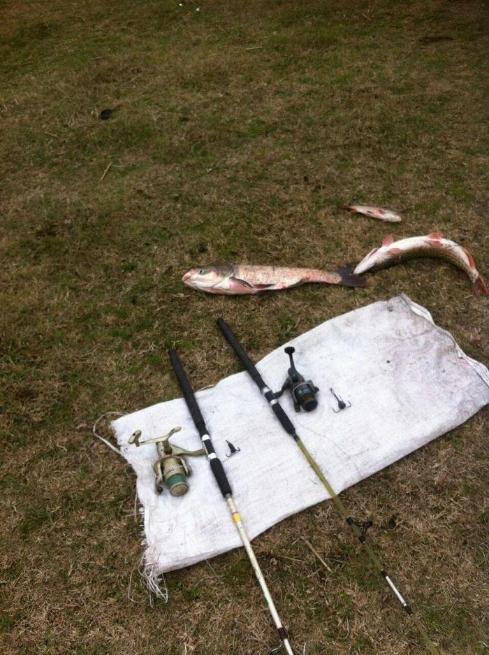 Одесский рыбоохранный патруль разоблачил три грубых нарушения на оз. Сафьяны
