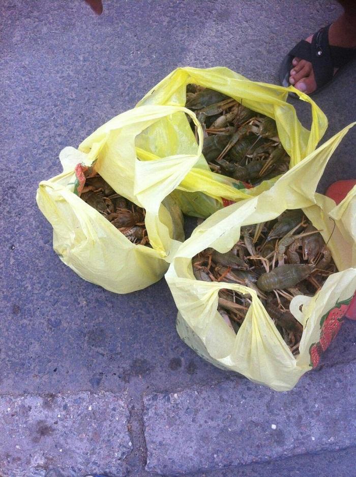 Одесский рыбоохранный патруль борется с нелегальными продавцами биоресурсов