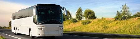 Доступные международные пассажирские перевозки