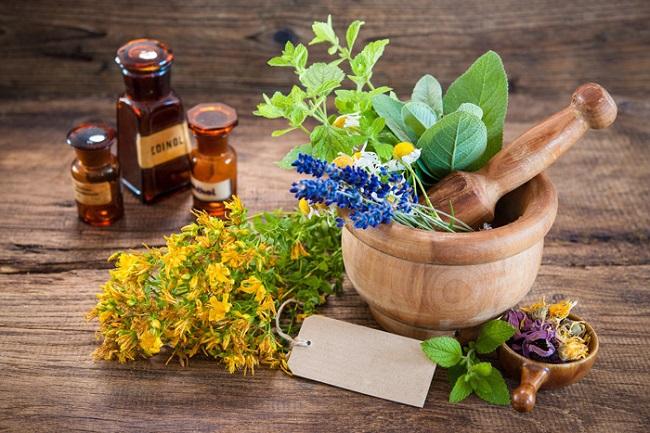 5 лучших трав для женского здоровья