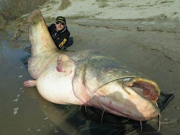 7 секретов удачной рыбалки
