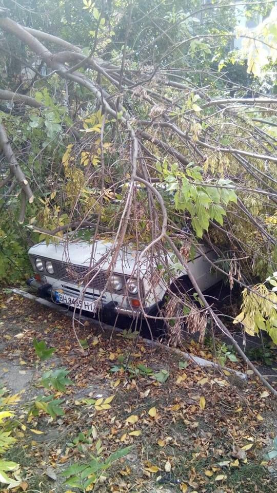 ветка накрыла авто Измаил