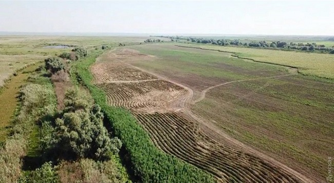 За выращивание конопли в Измаильском районе арестован трактор