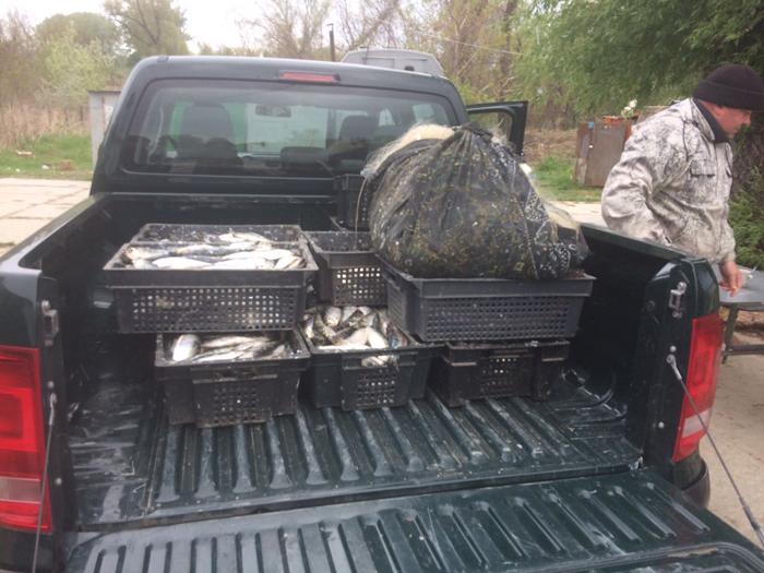 В Придунавье орудуют ученые-браконьеры
