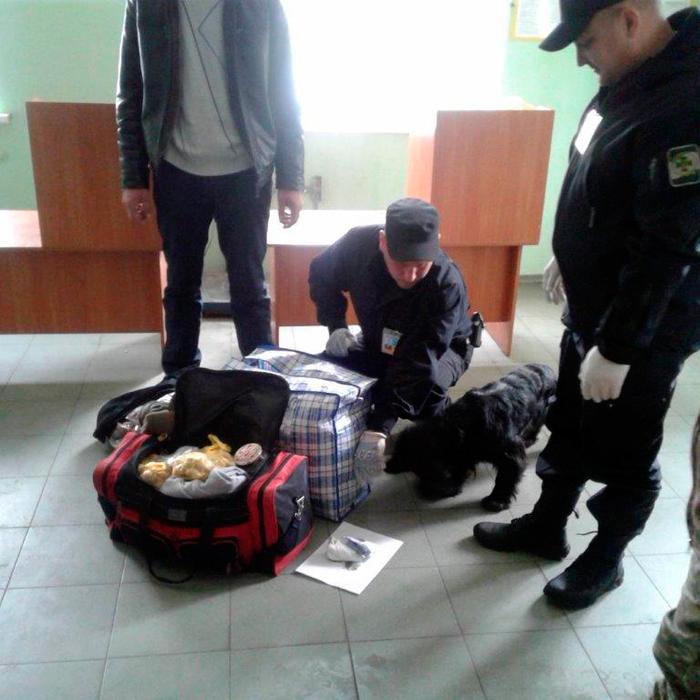 Острый нюх служебного спаниеля помог пограничникам Измаильского отряда выявить наркотики в пункте пропуска «Табаки»