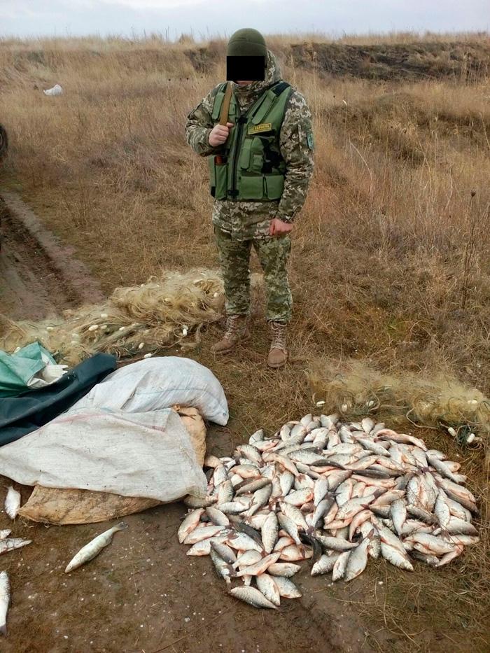 браконьеры Вилково