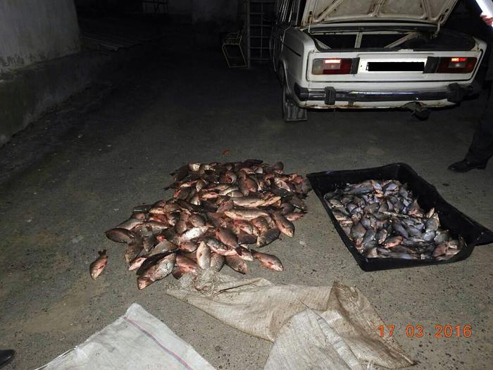пограничники поймали браконьеров
