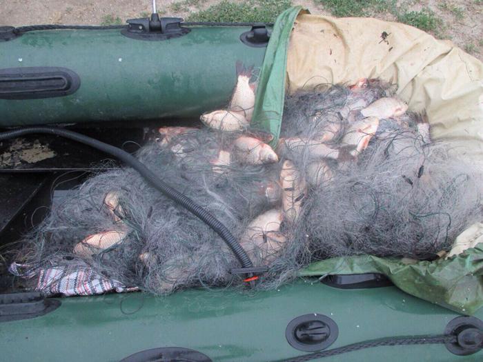 браконьеры Кагул