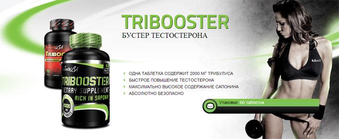 Купить TriBooster