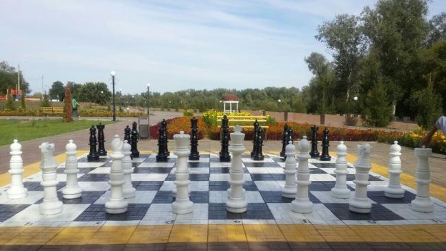 Купить шахматы в Украине
